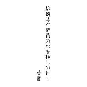 日本の色歳時記「萌黄色」