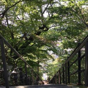 自然のトンネル
