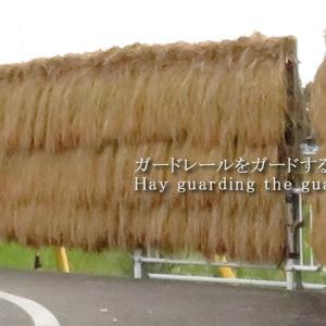 干し草のある風景