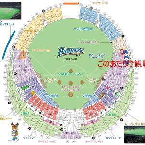明日は札幌ドームで今年の初観戦なんだけれど「伊藤大海投手」が気の毒過ぎる