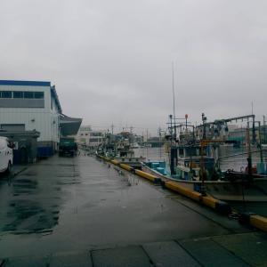 小雨模様の敦賀からスタート