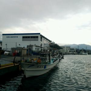 6月ラストの敦賀港!惜しいお知らせもあります。