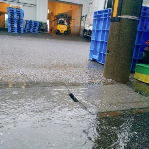 雨の敦賀港からスタート
