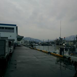 定休日明けは、敦賀港から