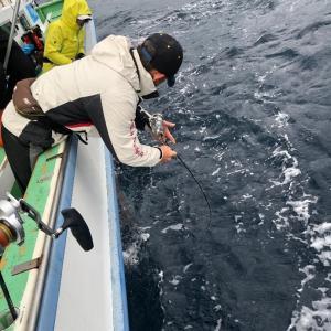 波崎沖、雨中の中深海ジギング 5、大物ラッシュ?