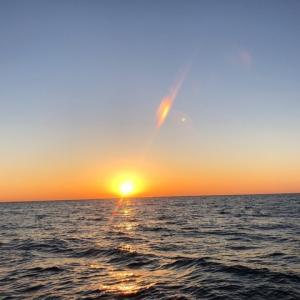 真鶴沖でリハビリジギング 2、初釣果