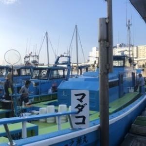 ひっさしぶり、タコエギングはタコでした(東京湾)