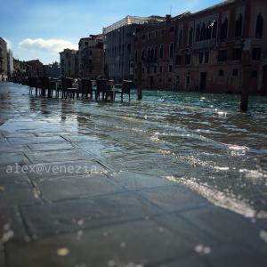春なのに...高潮浸水130cm&みぞれ(涙)@ヴェネツィア