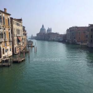 【alex的⭐︎セレクト動画】涙が出ちゃうほど美しいロックダウン中のヴェネツィア