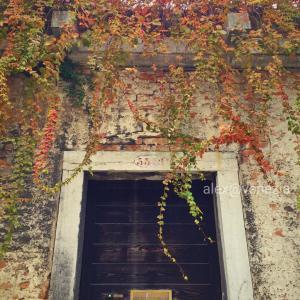 ヴェネツィアの秋を感じながら、占いと言霊に色々思ふ。。。