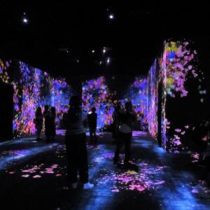 チームラボボーダレスへ デジタルアートミュージアム
