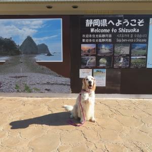 伊豆の松島と言われる堂ヶ島へ
