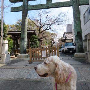 まだまだ名古屋