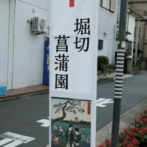 堀切菖蒲園 1