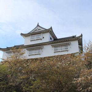 【完結前編~一二三段の津山城(^^♪】  Vol.1254