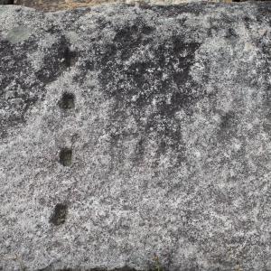 【山下ノ丸後編~兵糧攻めの舞台となった鳥取城】 Vol.1285