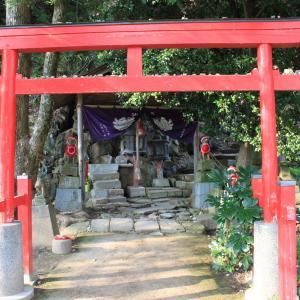 【戦国時代が色濃く残る鳥取城~山上ノ丸(本丸)編】 Vol.1286