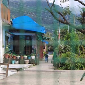 チベット子供村 2019