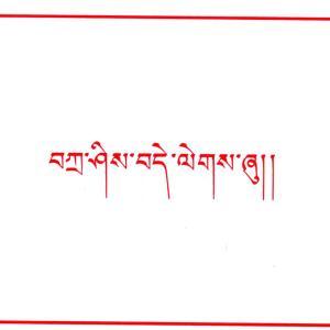 チベット亡命政権からのサンクスレター