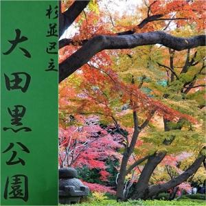 紅葉散歩へ、、太田黒公園