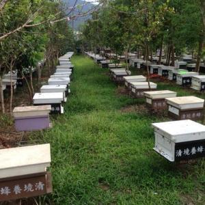 最近オープンした蜂蜜農場