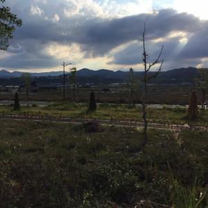 私の住む埔里の郊外に新しい町を作っています。