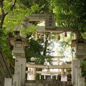 多摩川浅間神社(6月)