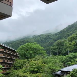 雨の京都で1日のんびり ☆ ひよっこ時代は遠いけど