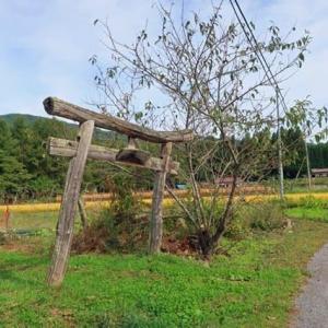 続、10月農村の風景