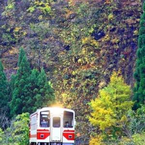 撮り鉄旅少しと踏ん張る紅葉