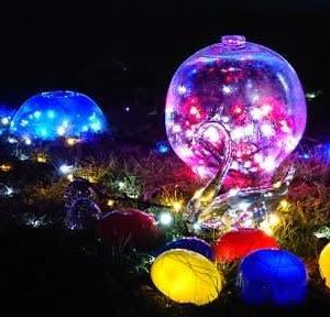 冬の夜空をロマンティックに♡2019~2020 ~安曇野市~