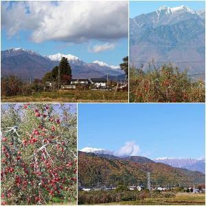 景色は秋から冬へ。。三段紅葉とりんご