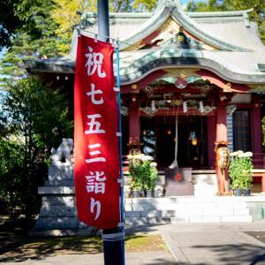 七五三モードの柴又八幡神社 ~Studio Laspが撮る柴又の文化