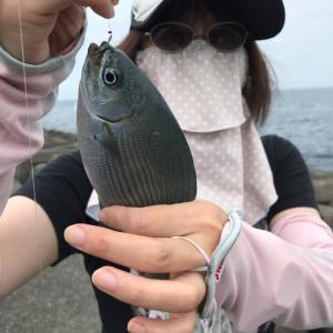 釣り @ 西伊豆宇久須