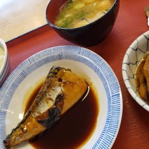 オーソドックスな鯖の煮付け…老人向けの昼ごはん