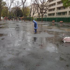 雨遊び&楽天購入品