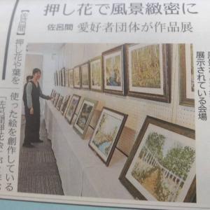 北海道新聞社に取材をしていただきました