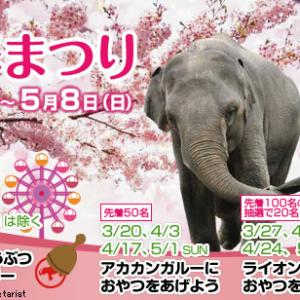 明日4/17(日)は東山公園に集合だ!