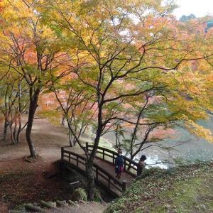 用作公園と岡城の紅葉を見てきました
