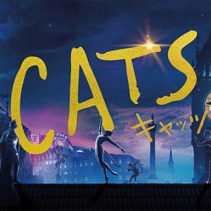 映画CATSと、あひるの競争