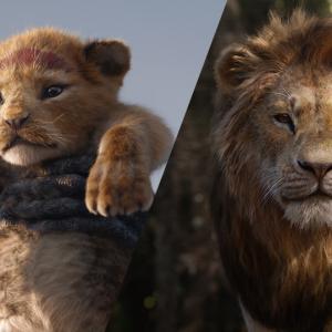 今日こそ、映画ライオン・キングを観てきました