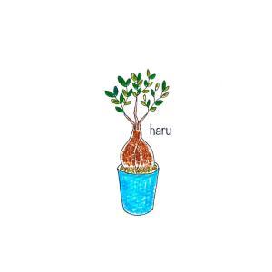 イラスト【ガジュマルの木】