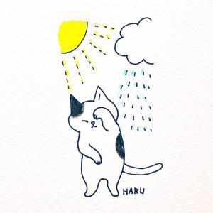 世界気象デーのイラスト【猫が顔を洗うと雨になる】