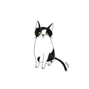 Instagramからのリクエストのイラスト猫
