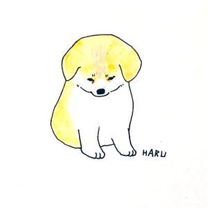 今日のイラストは忠犬ハチ公。