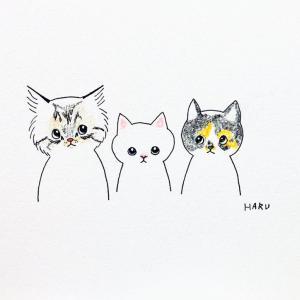 仲良し三匹の猫ちゃんのイラスト。