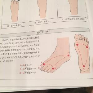 足のトラブルの原因 多くはアーチの崩れにあります