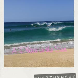 ノースショアの波とピクニック