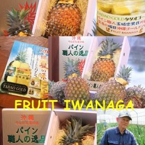タダオゴールド沖縄パイナップル・・・FRUIT IWANAGA