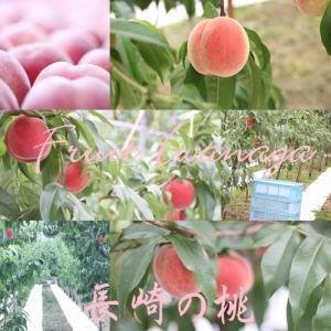 父の日に長崎の桃!  オススメです。・・・フルーツいわなが